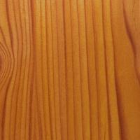 M147 Zirbelkiefer - Holzdekor für HPL Schichtstoffplatten