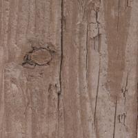 M247 Kiefer rustikal - Holzdekor für HPL Schichtstoffplatten